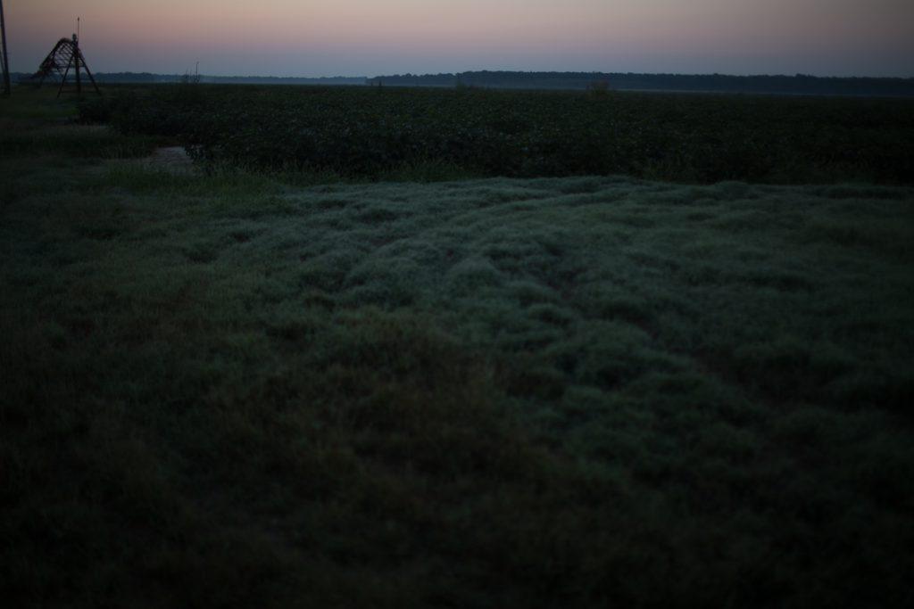 Jonestown, a Clarksdale photo story by Jess Bollaert.